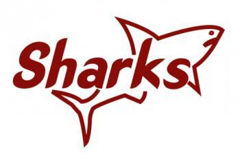 Kariobangi_Sharks