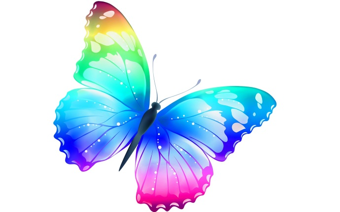Butterfly-most-beautiful-desktop-wallpaper.jpg